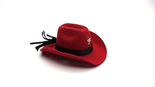 Carolina Designer Dragons' Bearded Dragon Cowboy Hat, Red