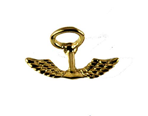 The Quiet Witness 6030334 Wings & Halo Guardian Angel Lapel Pin Angel Wings Guardian Angel