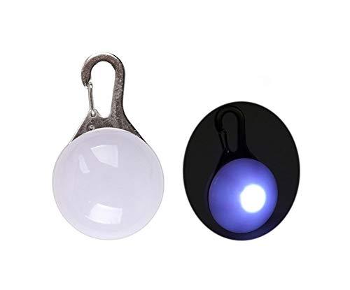 SFQRYP Collar con linterna LED para perro y gato, colgante brillante de seguridad nocturna para mascotas, collar luminoso y brillante para perros (color: blanco, tamaño: S)