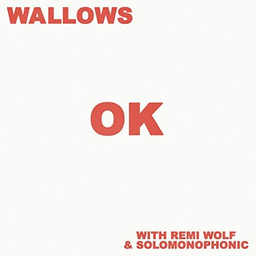 Wallows feat. Remi Wolf & Solomonophonic