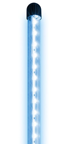 Juwel Aquarium 49340 NovoLux LED 40, blau