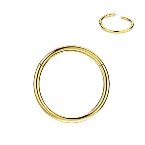 20g Cartilage Earring Rook Earrings Daith Earrings Tragus Earrings Anti-Tragus Earring Gold Nose Ring Hoop Nose Rings 20 Gauge 5mm