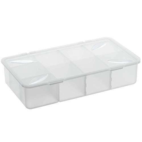 Rotho Snappy Aufbewahrungsbox 3l mit Einteilungen und Deckel, Kunststoff (PP) BPA-frei, transparent, 3l (33,9 x 19,8 x 7,6 cm)