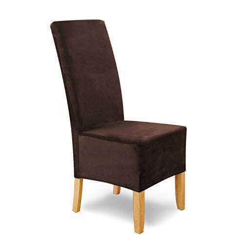 SCHEFFLER-Home Stretch Stuhlhusse Puma Velvet, 6er Set elastische Velour Stuhlabdeckungen, Stuhlhussen Schwingstühle, Spannbezug mit Gummiband, Elegante Chenille Stuhlbezüge
