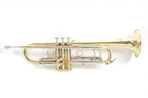 Roy Benson Tromba in Sib laccata TR-403 incl. Astuccio rettangolare