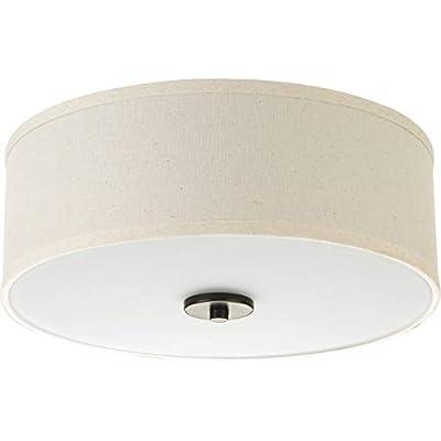 Progress Lighting P3696-0930K9 Inspire One-Light LED Flush Mount