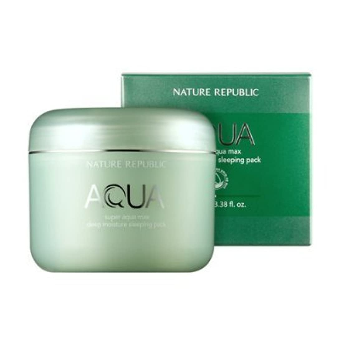 磨かれた計算するデータベースNature Republic Super Aqua Max Deep Moisture sleeping Pack 100ml