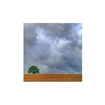 The Far Away Tree