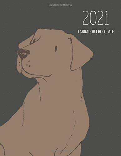 2021 Labrador Chocolate: Dated Weekly Planner With To Do Notes & Dog Quotes - Labrador Chocolate Brown (Awesome Calendar Planners for Dog Owners Dark)
