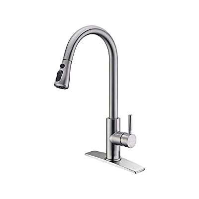 FORIOUS Stainless Steel Kitchen Sink Faucet