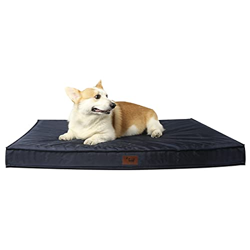 Tail Stories Outdoor All Weather Dog/Cat Bed, Waterproof, Removable Cover, Egg Orthopedic Foam Pet Bed with Washable and Removable Cover Waterproof Bottom, Navy, Large