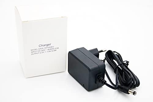 Cargador para coche eléctrico infantil de 12 V o 6 V (12 V).