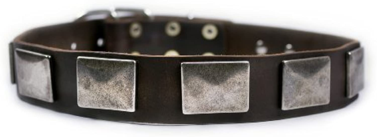 Dean and Tyler  TYLER'S VINTAGE , Leather Dog Collar with Vintage Nickel Plates  Brown  Size 81cm by 4cm  Fits Neck 76cm to 86cm