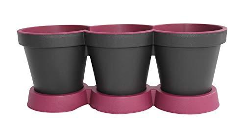 3 in 1 Kruidpot Bloempot Plastic Voor Vensterbank/Keuken 40 cm Tweekleurig Paars