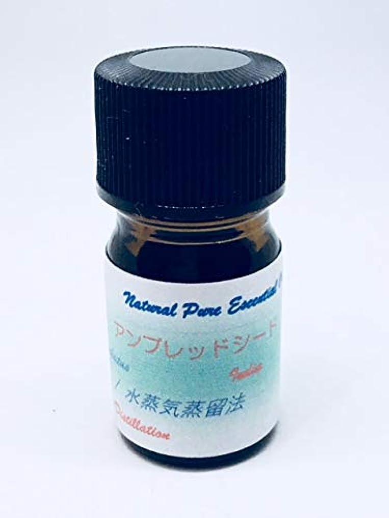 行商人慢なビザアンブレッドシード(植物性ムスク)精油 3ml100%ピュアエッセンシャル