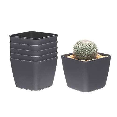 T4U 10cm Plastik Selbstbewässerung Blumentopf Eckig Anthrazit 6er-Set, Selbstwässernde Wasserspeicher Pflanzgefäße Klein für Zimmerpflanzen