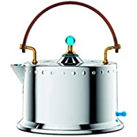 Bodum 12019-16US Ottoni Electric Water Kettle, 34 Oz (Stainless Steel)