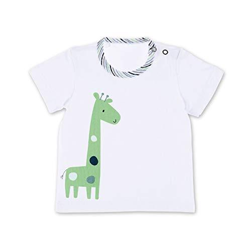 Sterntaler Baby-Jungen T-Shirt, Weiß (Weiss 500), 9-12 Monate (Herstellergröße: 80)