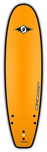 BIC Sport G-Board EVO Soft Surfboard