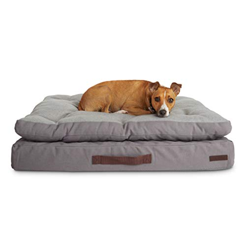 """PETCO Brand - Reddy Grey Double-Pillowtop Lounger Orthopedic Dog Bed, 32"""" L X 24"""" W, Medium"""
