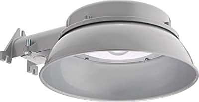 Lithonia Lighting Wall/Post Mount Outdoor LED Grey Area Security Light