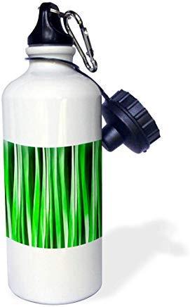 GFGKKGJFD624 Taiche – Pintura acrílica – abstracto – ambiente tropical verde rayas abstracto patrón de aluminio deportes botella de agua novedad divertido para hombres mujeres niños Navidad Bithtday regalos