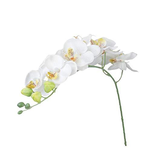 Orkidé verklighetstrogen konstgjorda silkesblommor verklig känsla simulering fjäril orkidé för växt heminredning