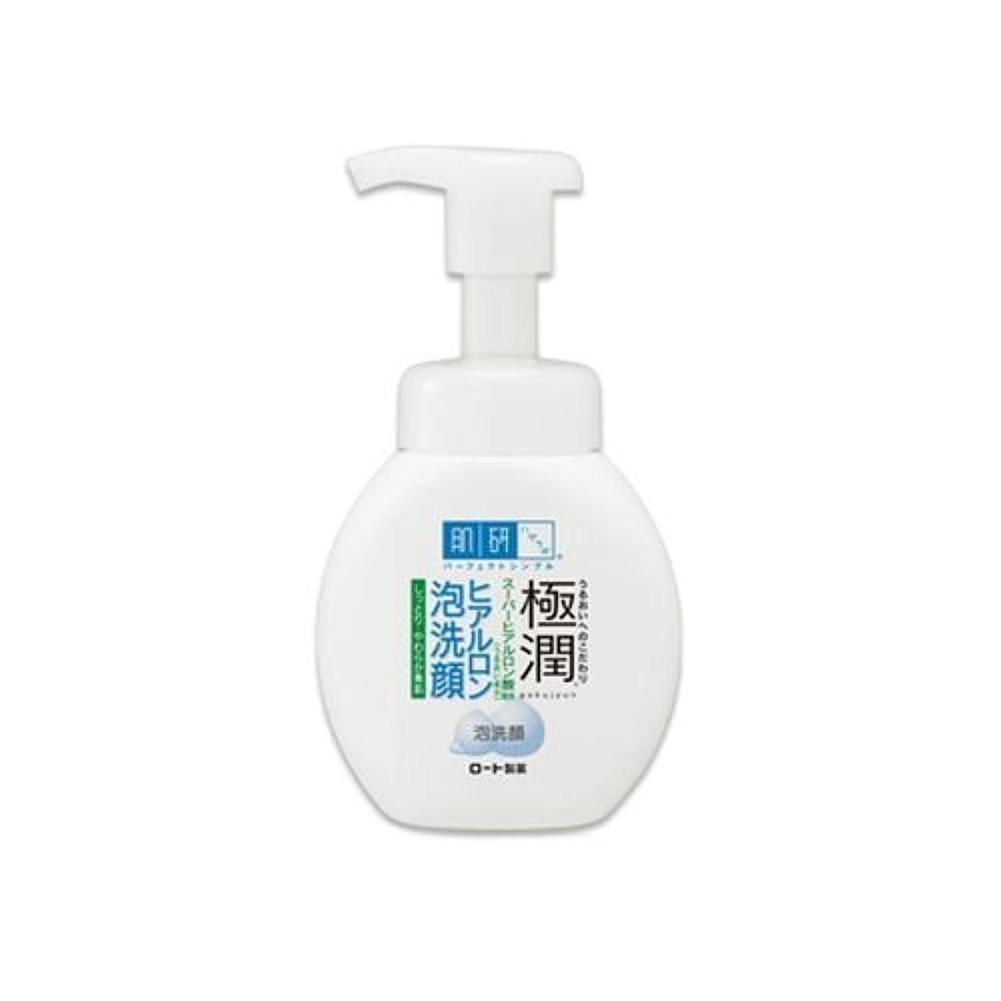 よろめくスコアパンダ肌研(ハダラボ)極潤ヒアルロン 泡洗顔 160ml