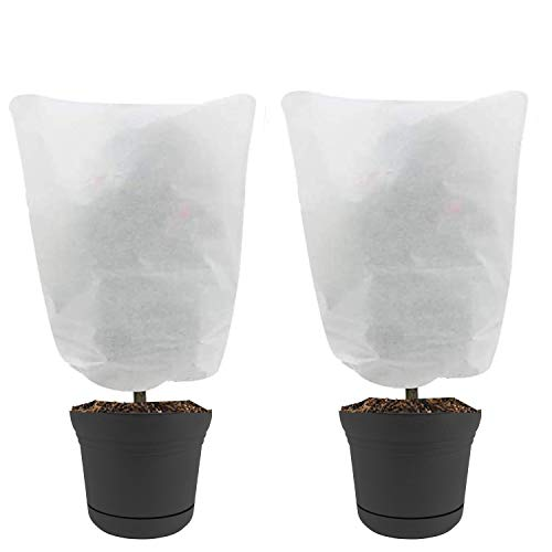 Nanum - Juego de 2 cubiertas para plantas con protección contra congelación, tela no tejida para invierno con cordón, para proteger...