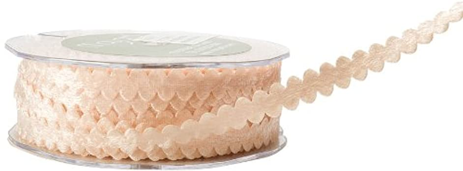 May Arts 3/8-Inch Wide Ribbon, Champagne Velvet Ric Rac