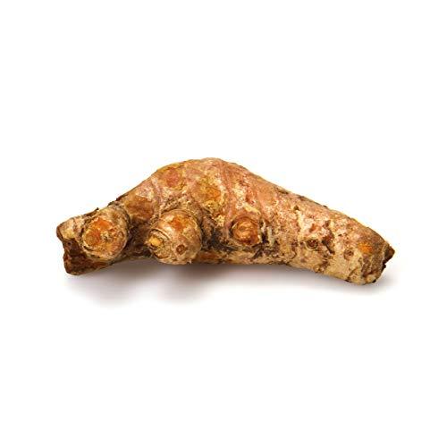 Root Turmeric