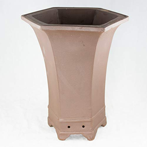 Hexagon Brown Zisha Cascade Bonsai Pot & Orchid Planter - 8.25'x 8.25'x 11'