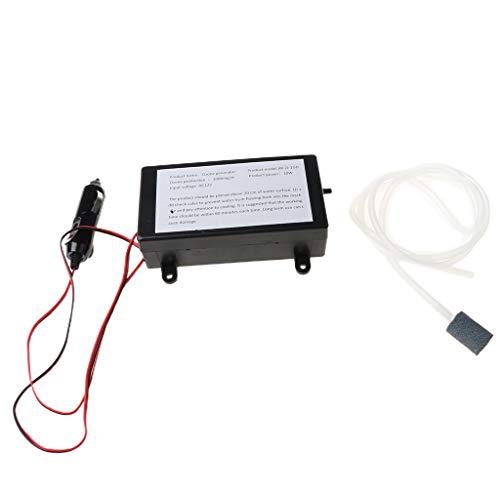 Folewr generador de ozono ozonizador agua aire esterilizar purificador limpiador tratamiento frutas vegetales pecera desinfectante 1000 mg