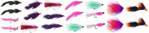 Discountflies Alaska Silver Salmon Collection 20 Flies + Fly Box