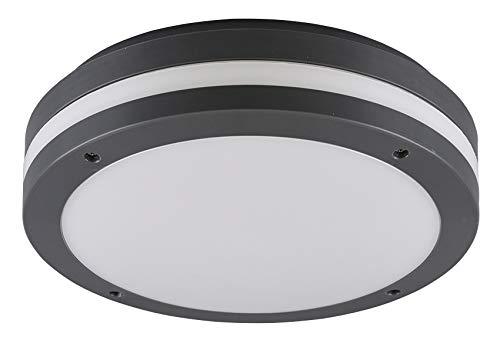Reality Leuchten LED Außen Deckenleuchte Kendal R62151142, Kunststoff anthrazit/weiß, inkl. 12 Watt LED