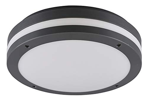 Reality Leuchten LED Outdoor plafondlamp Kendal