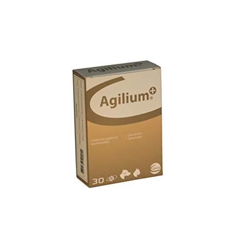Agilium \