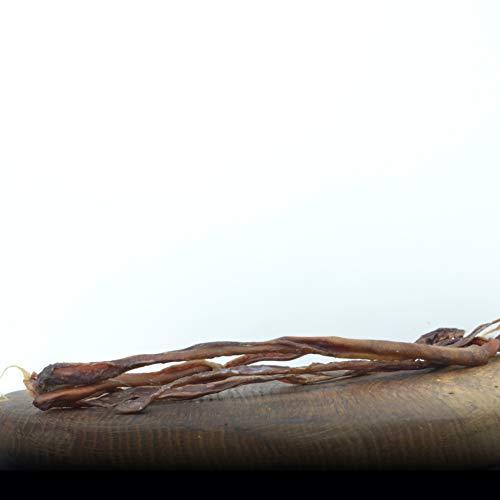 George & Bobs Schweineziemer - 1000g - Die Kausnack Delikatesse für Hunde | Ziemer am Stück | Kauspaß Natürliche Zahnpflege