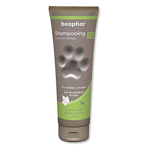 BEAPHAR – Shampoing premium doux tous pelages pour chien – Aux extraits naturels de...