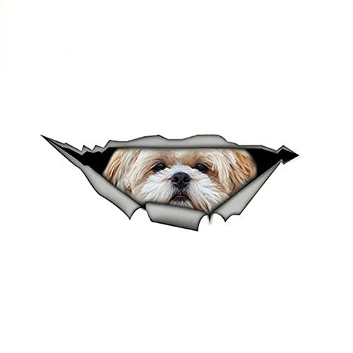gsbyyön Coche Calcomanía Vinilo Carro Automóvil Parachoques Vinyl Sticker Decal Lovely Dog Car Accessories Cover Scratches Calcomanía 15Cmx6Cm 2 Piezas