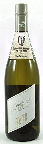 6 x Grüner Veltliner Weinviertel DAC Selection 2019 im Sparpack Weingut R&A Pfaffl, trockener Weißwein aus Niederöstereich vom der EUROPEAN WINERY OF THE YEAR 2016