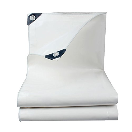 JXXDDQ Tarpaulin Sheet Waterproof Anti-static Eco-Friendly Cold-resistant No Smell, 500g/m², Thickness 0.45mm (Color : White, Size : 6x7m)