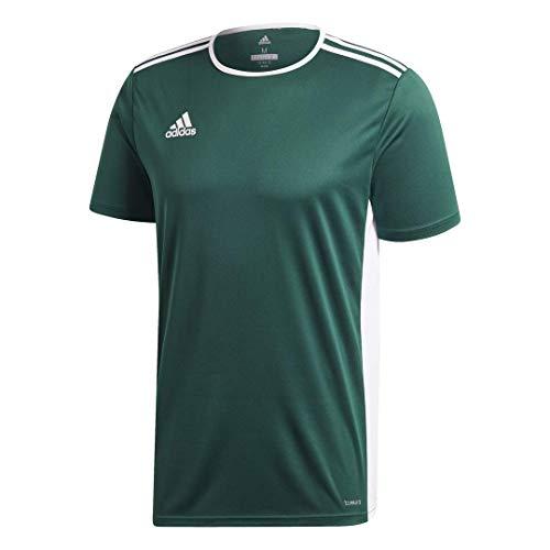 adidas Men's Entrada 18 AEROREADY Primegreen Regular Fit Soccer Short Sleeve Jersey, Collegiate Green/White, Small