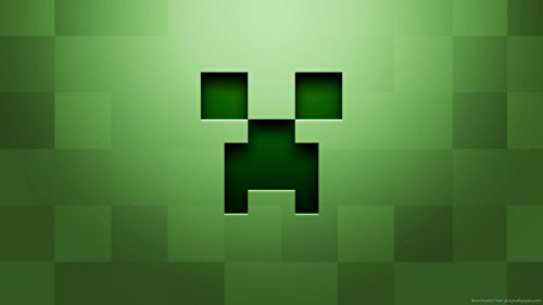 Minecraft Servers for Beginners: Mostly Hypixel and Mineplex (Servers for all sorts of levels Book 1) (English Edition)