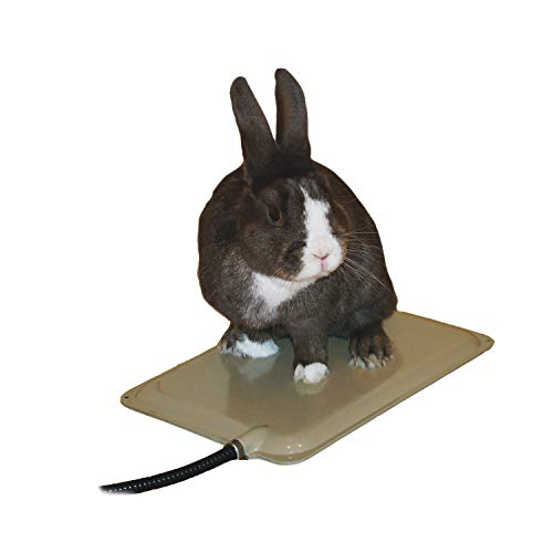small animal heat pad - 1