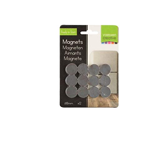 Small Magnets 12-Piece, 1.8 cm Diam x 0.4 cm Thick