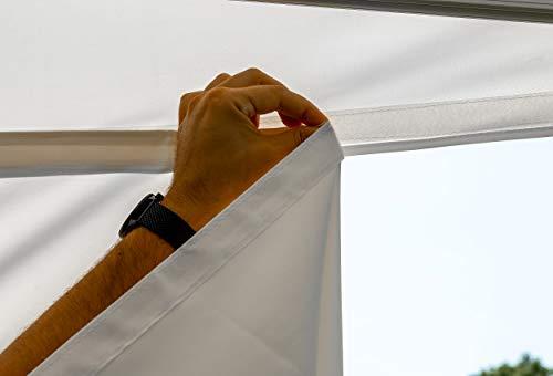 31 b7x4yyXL - Stabilezelte Faltpavillon 2x2 Meter Professional ohne Fensterseiten Bordeaux