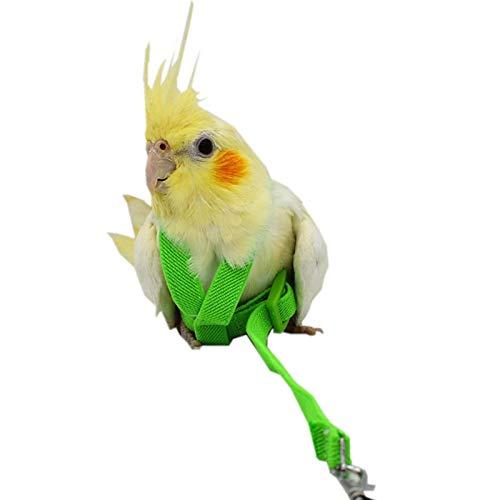 Correa para pájaros de mascotas con arnés ajustable, antimordedura de entrenamiento para mascotas al aire libre de tracción para mascotas pequeño Budgerigar Love Bird Cockatiel Mynah Bird, 2 metros