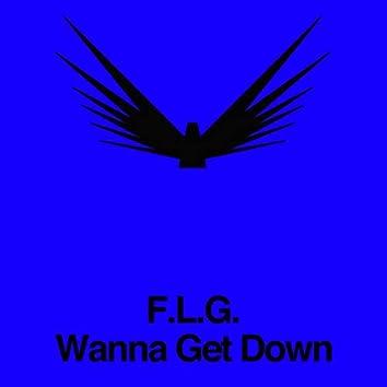 Wanna Get Down
