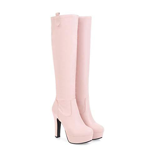 AFTWLKJ Botas Mujeres Invierno Rodilla Botas Altas Plataforma Tacón alto Botas largas Talla grande 44 45 Toe redondo Zapatos Sexy Bottes Femme Black ( Color : Pink Fur Lining , Shoe Size : 10.5 )